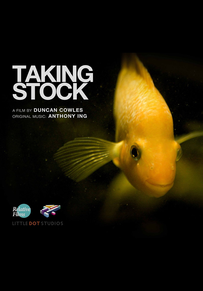 Taking Stock Locandina - Roma Creative Contest