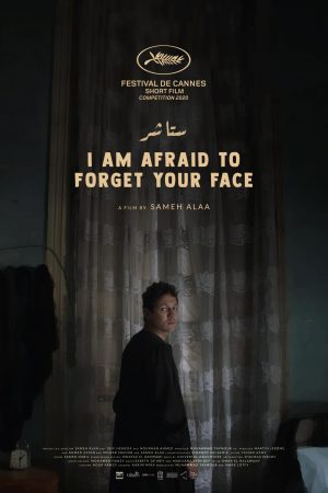 Poster - I am afraid to forget your face